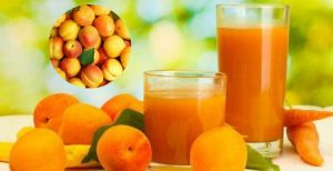 Apricot benefits for skin, pregnants, and overall health