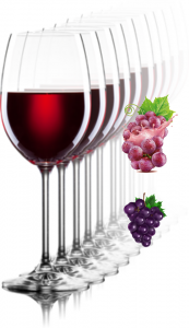 The truth about the health benefits of wine